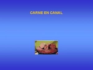 CARNE EN CANAL Industria Crnica Partes del animal