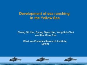 Development of sea ranching in the Yellow Sea