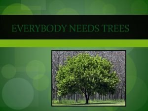 EVERYBODY NEEDS TREES Trees time to think 1