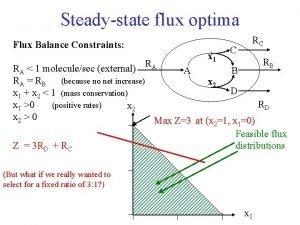 Steadystate flux optima Flux Balance Constraints x 1