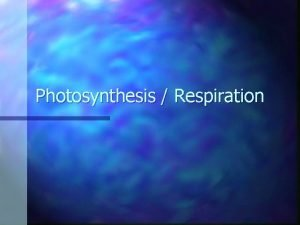 Photosynthesis Respiration Photosynthesis Organisms that carry on photosynthesis