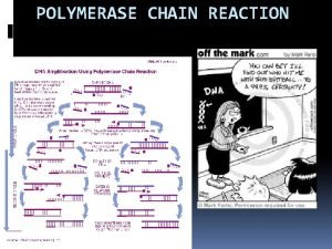 POLYMERASE CHAIN REACTION What is Polymerase chain reaction