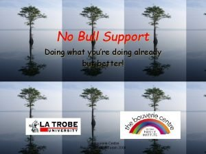 No Bull Support Doing what youre doing already