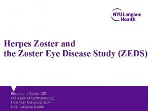 Herpes Zoster and the Zoster Eye Disease Study