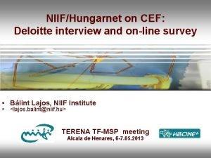 NIIFHungarnet on CEF Deloitte interview and online survey