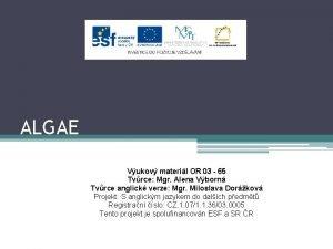 ALGAE Vukov materil OR 03 65 Tvrce Mgr