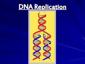 DNA Replication DNA Replication v Replication DNA copies