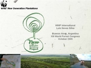 New Generation Plantations WWF International Lus Neves Silva