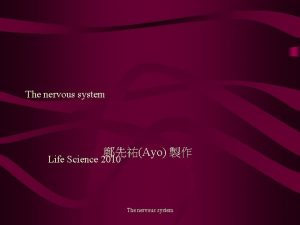 The nervous system Ayo Life Science 2010 The