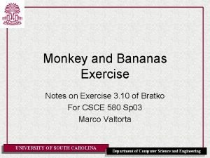 Monkey and Bananas Exercise Notes on Exercise 3