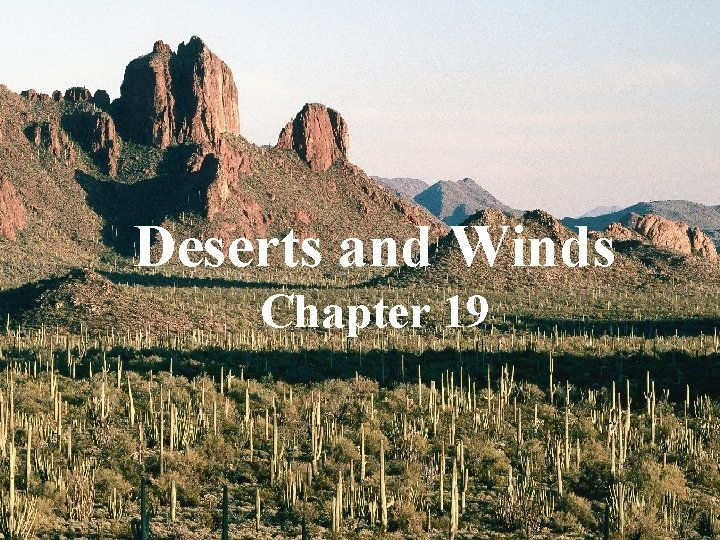 Deserts and Winds Chapter 19 A typical desert