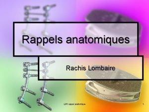 Rappels anatomiques Rachis Lombaire LDR rappel anatomique 1