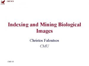 CMU SCS Indexing and Mining Biological Images Christos