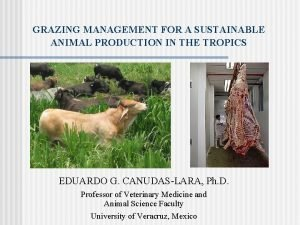 GRAZING MANAGEMENT FOR A SUSTAINABLE ANIMAL PRODUCTION IN
