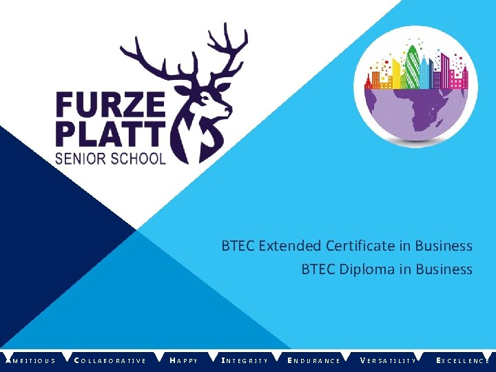 BTEC Extended Certificate in Business BTEC Diploma in