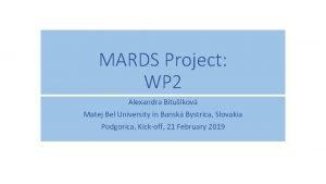 MARDS Project WP 2 Alexandra Bitukov Matej Bel