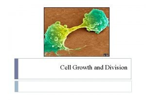 Cell Growth and Division The Cell Cycle The