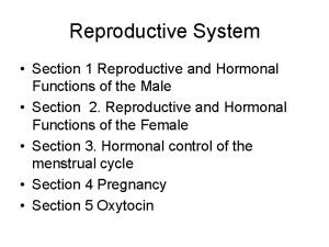 Reproductive System Section 1 Reproductive and Hormonal Functions