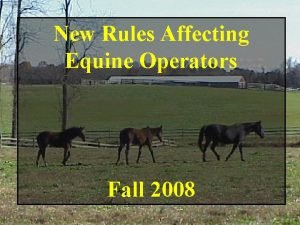 New Rules Affecting Equine Operators Fall 2008 Equine