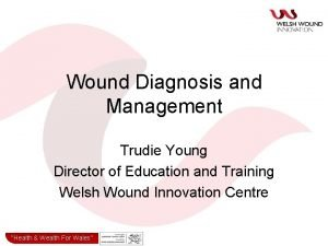 Wound Diagnosis and Management Trudie Young Director of
