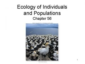 Ecology of Individuals and Populations Chapter 56 1