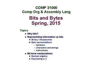 COMP 21000 Comp Org Assembly Lang Bits and