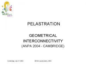 PELASTRATION GEOMETRICAL INTERCONNECTIVITY ANPA 2004 CAMBRIDGE Cambridge July