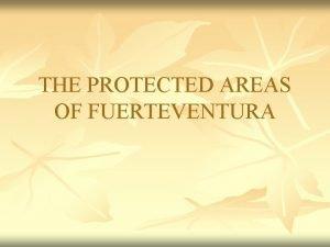 THE PROTECTED AREAS OF FUERTEVENTURA Fuerteventura is one