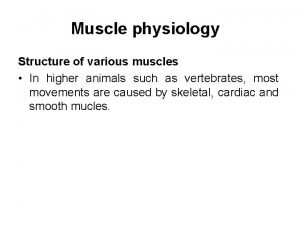 Muscle physiology Structure of various muscles In higher