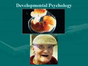 Developmental Psychology Research Studies Cross Sectional Studies Study
