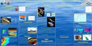 Coordinating a Fleet of Autonomous Underwater Gliders Using