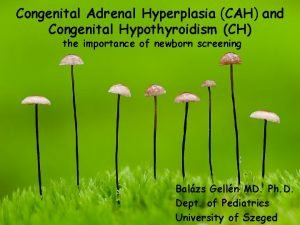 Congenital Adrenal Hyperplasia CAH and Congenital Hypothyroidism CH
