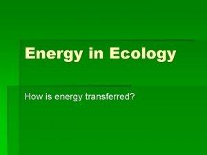 Energy in Ecology How is energy transferred Energy