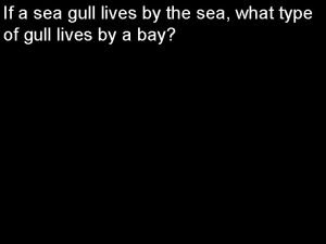If a sea gull lives by the sea