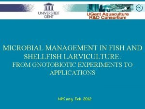 MICROBIAL MANAGEMENT IN FISH AND SHELLFISH LARVICULTURE FROM