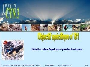 Gestion des quipes cynotechniques CONSEILLER TECHNIQUE CYNOTECHNIQUE CYN
