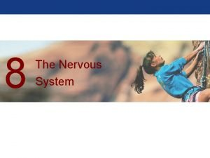 8 The Nervous System The Nervous System Two