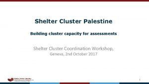 Shelter Cluster Palestine Building cluster capacity for assessments