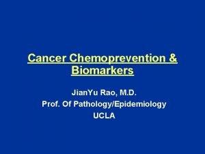 Cancer Chemoprevention Biomarkers Jian Yu Rao M D