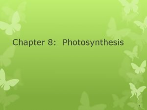 Chapter 8 Photosynthesis 1 Energy and Life Energy