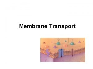 Membrane Transport Definitions Solution mixture of dissolved molecules