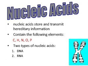 nucleic acids store and transmit hereditary information Contain