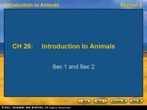 Introduction to Animals CH 26 Introduction to Animals