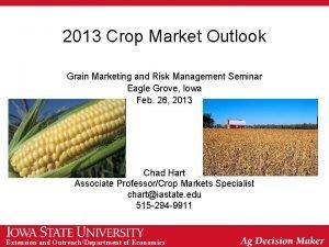 2013 Crop Market Outlook Grain Marketing and Risk