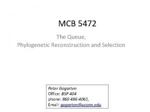 MCB 5472 The Queue Phylogenetic Reconstruction and Selection