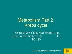 Metabolism Part 2 Krebs cycle This tutorial will