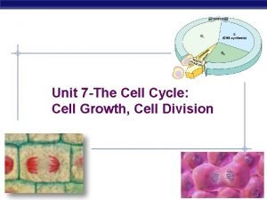 Unit 7 The Cell Cycle Cell Growth Cell