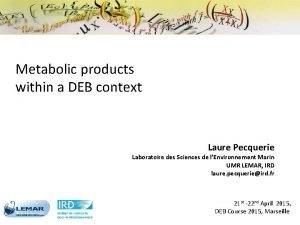 Metabolic products within a DEB context Laure Pecquerie