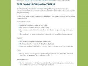 Caring for Fruit Trees Grant Jones City of