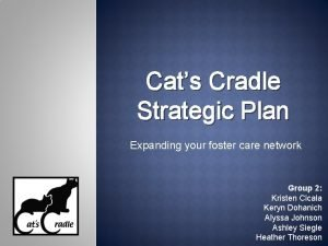 Cats Cradle Strategic Plan Expanding your foster care